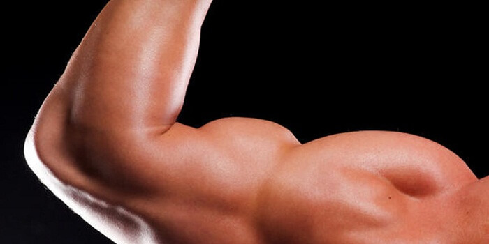 What You Should Do To Build Bigger Muscles